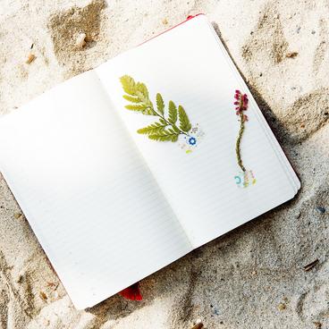At skrive dagbog